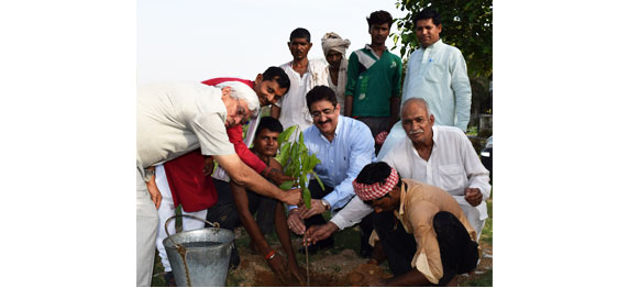 ICMEI Begins Its Commitment of Planting One Lac Trees